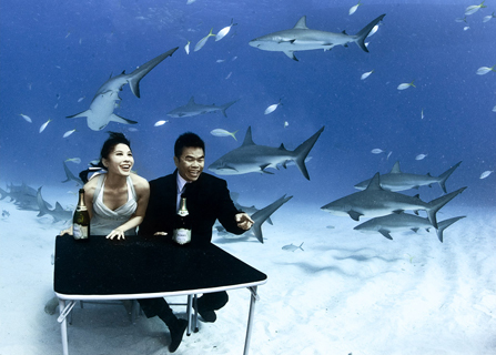 The shoot for No Shark Fins Singapore campaign with Miss Jessica Tan and WH Mok
