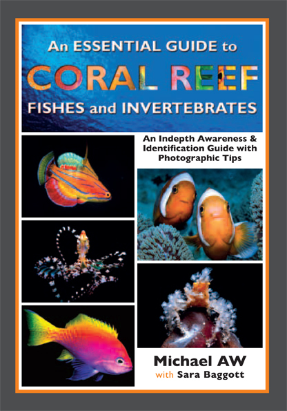 Essential Coral Reef Guide